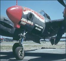 p-38-lightning-john-sanders.jpg